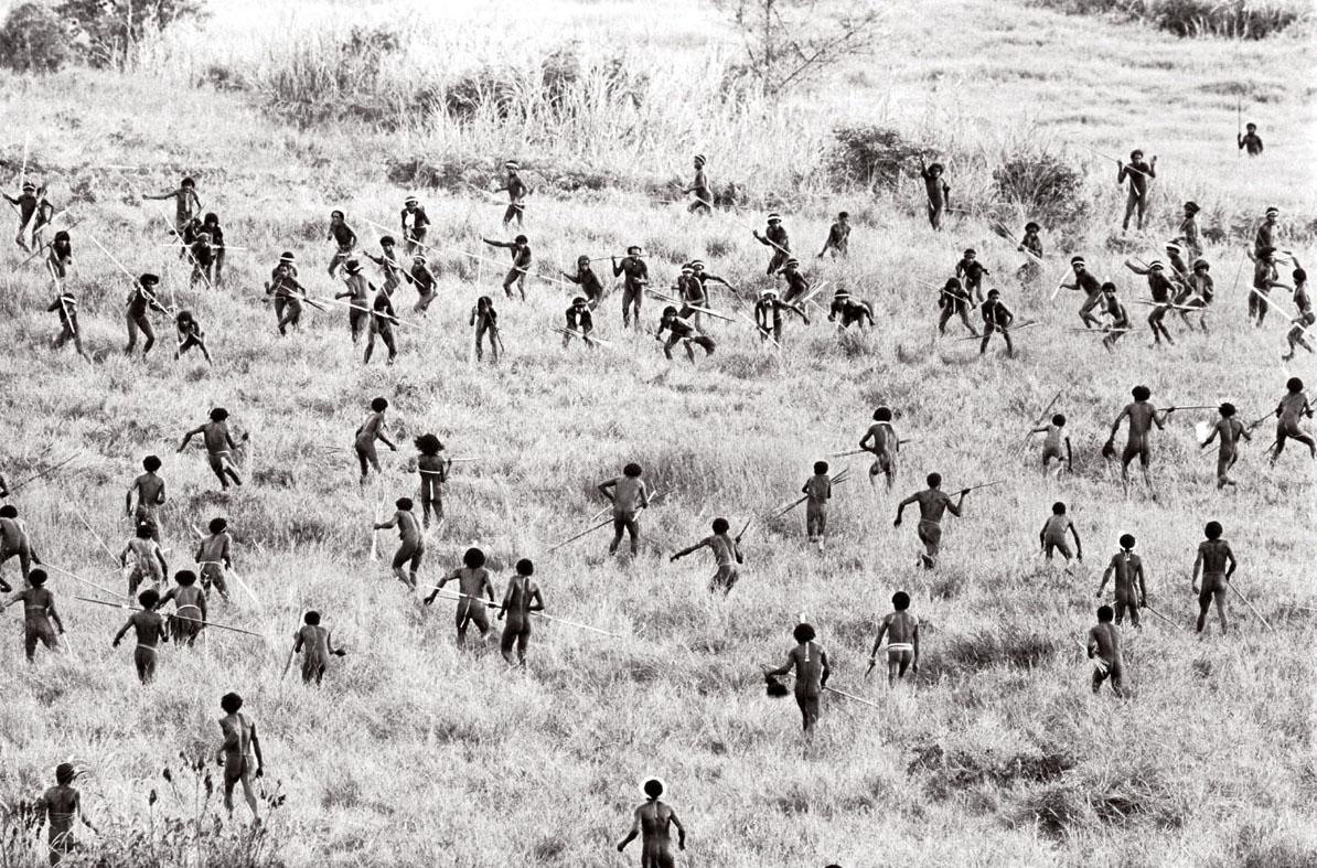 Chiến tranh bộ lạc ở New Guinea giữa hai cộng đồng nông nghiệp (1960)